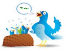 Water Crisis Twitters